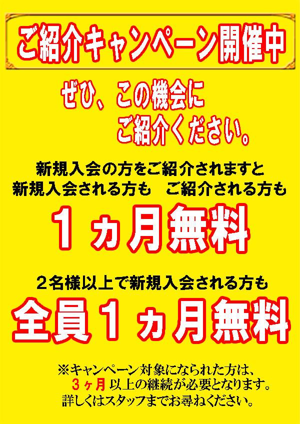 ご紹介キャンペーン2